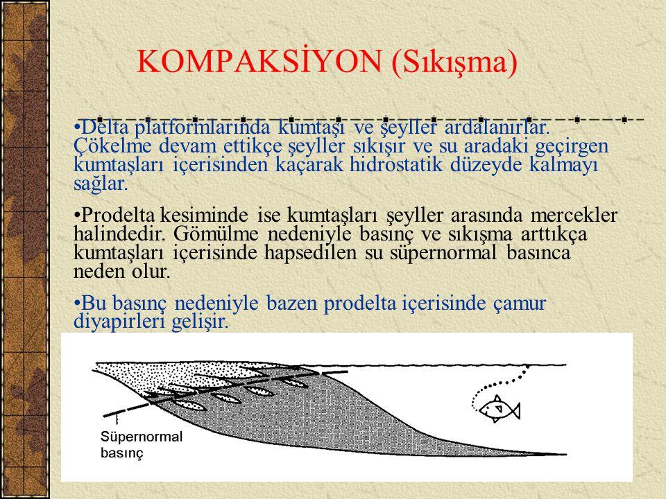 KOMPAKSİYON (Sıkışma)