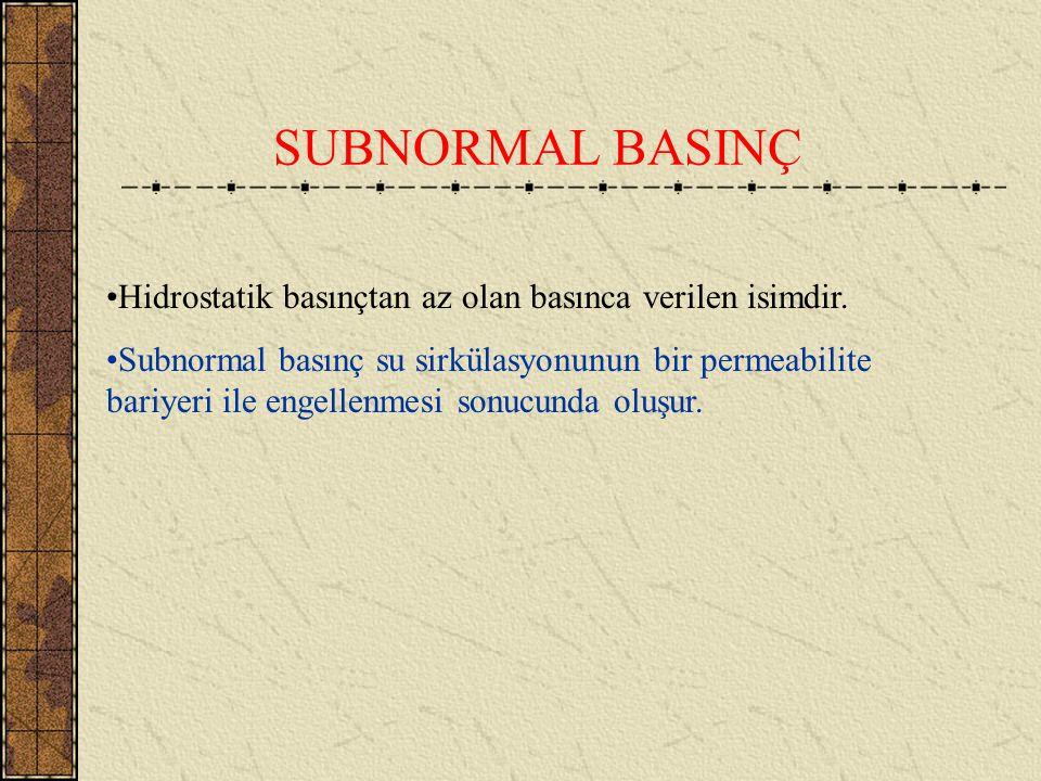SUBNORMAL BASINÇ Hidrostatik basınçtan az olan basınca verilen isimdir.
