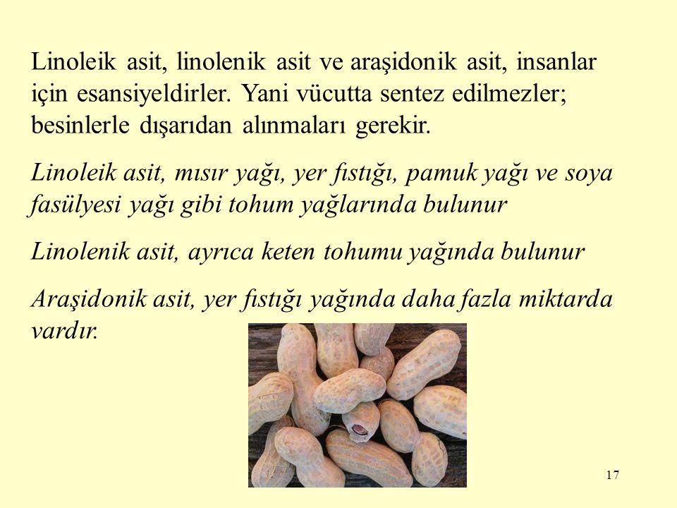 Linoleik asit, linolenik asit ve araşidonik asit, insanlar için esansiyeldirler. Yani vücutta sentez edilmezler; besinlerle dışarıdan alınmaları gerekir.