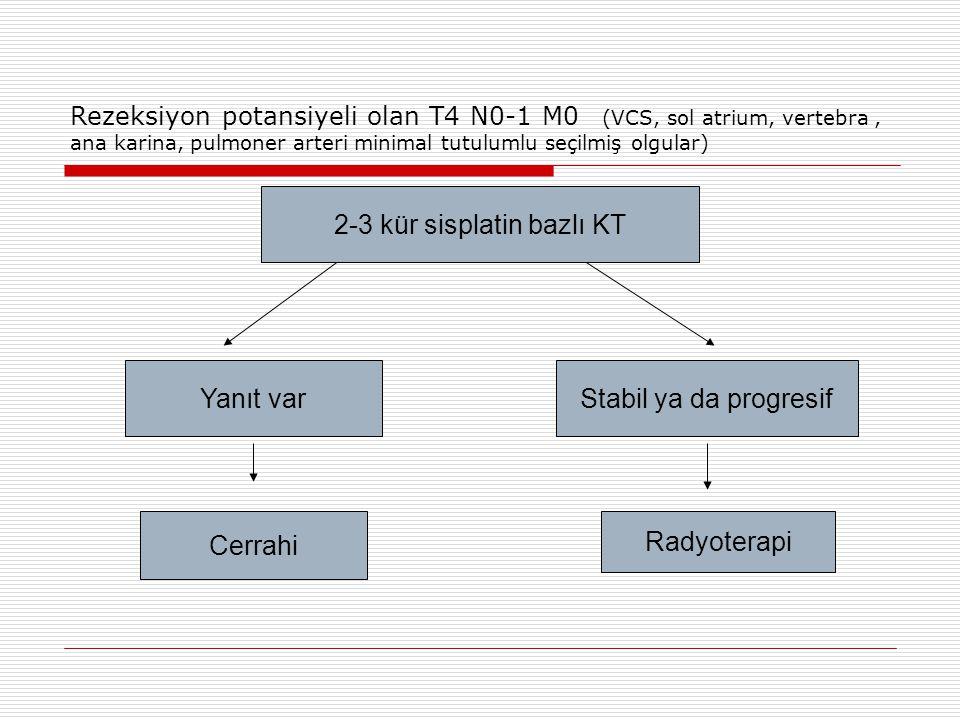 2-3 kür sisplatin bazlı KT