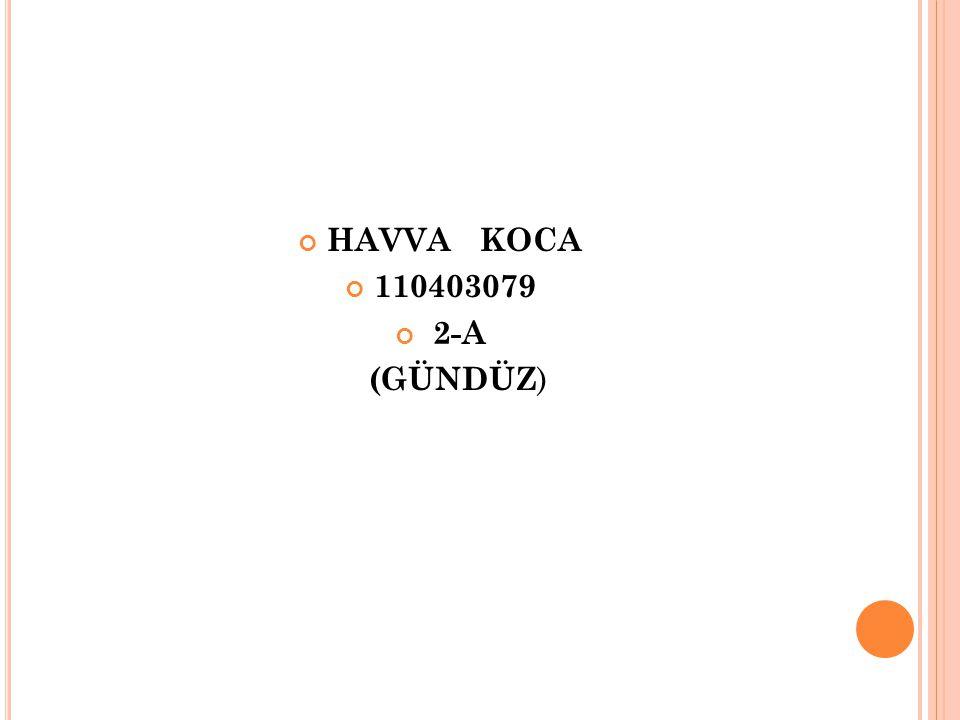 HAVVA KOCA 110403079 2-A (GÜNDÜZ)