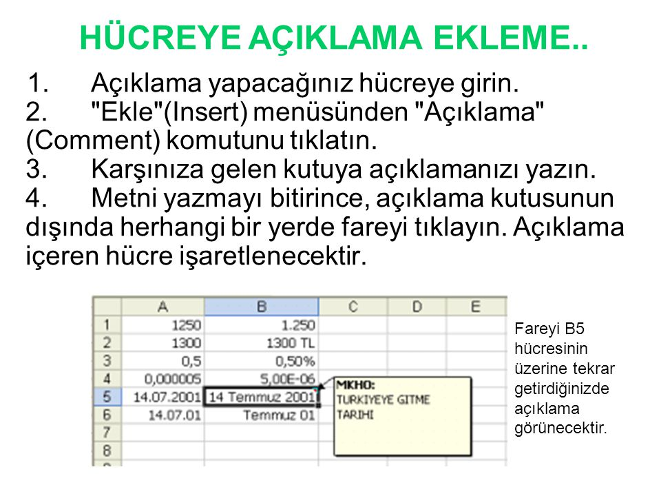 HÜCREYE AÇIKLAMA EKLEME..