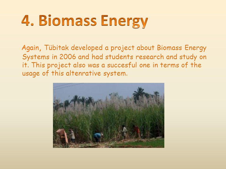 4. Biomass Energy