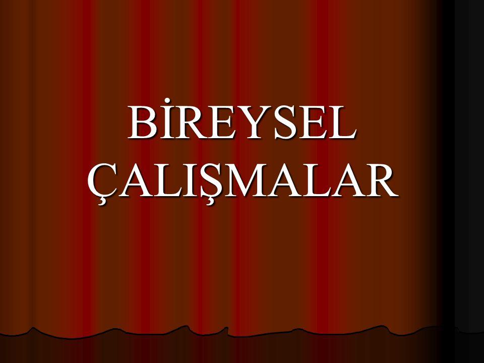 BİREYSEL ÇALIŞMALAR