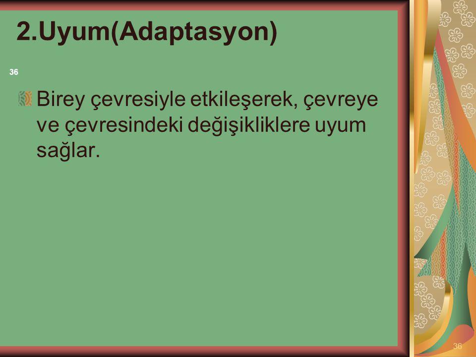 2.Uyum(Adaptasyon) 36.