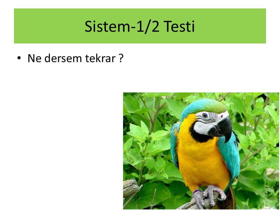 Sistem-1/2 Testi Ne dersem tekrar