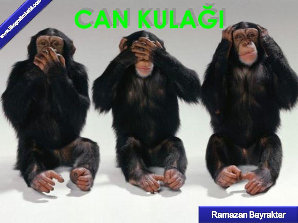 CAN KULAĞI www.ilkogretimkalbi.com Ramazan Bayraktar