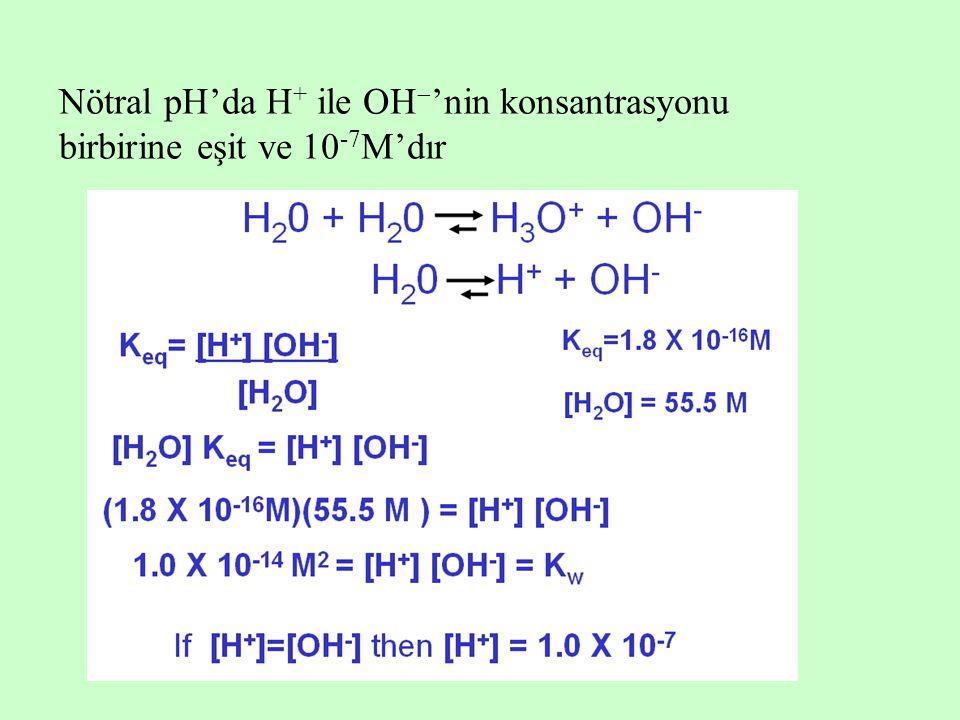 Nötral pH'da H+ ile OH'nin konsantrasyonu birbirine eşit ve 10-7M'dır