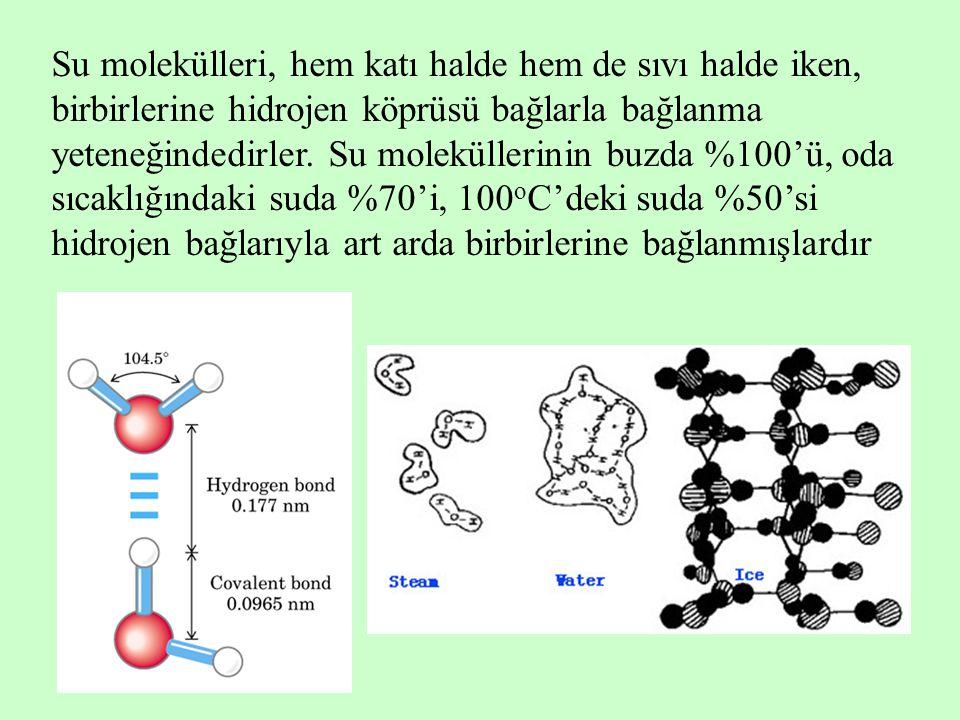 Su molekülleri, hem katı halde hem de sıvı halde iken, birbirlerine hidrojen köprüsü bağlarla bağlanma yeteneğindedirler.