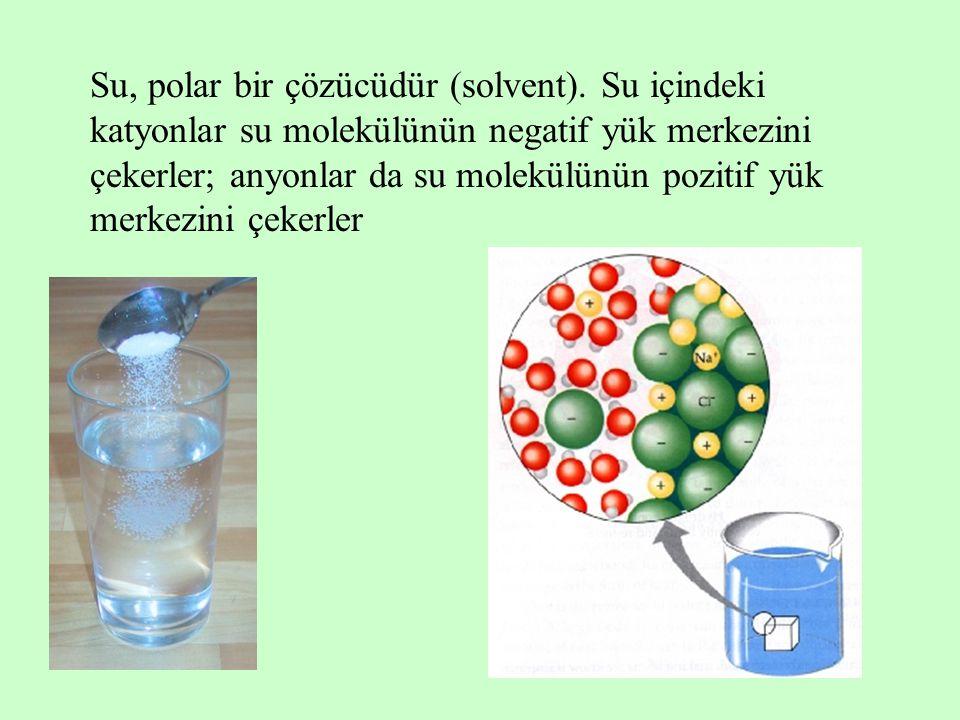 Su, polar bir çözücüdür (solvent)