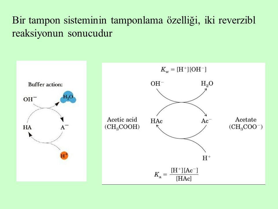 Bir tampon sisteminin tamponlama özelliği, iki reverzibl reaksiyonun sonucudur