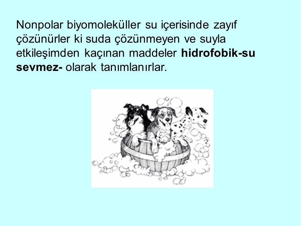 Nonpolar biyomoleküller su içerisinde zayıf çözünürler ki suda çözünmeyen ve suyla etkileşimden kaçınan maddeler hidrofobik-su sevmez- olarak tanımlanırlar.