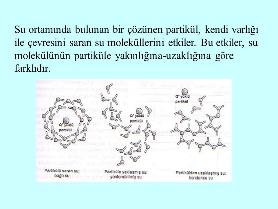 Su ortamında bulunan bir çözünen partikül, kendi varlığı ile çevresini saran su moleküllerini etkiler.