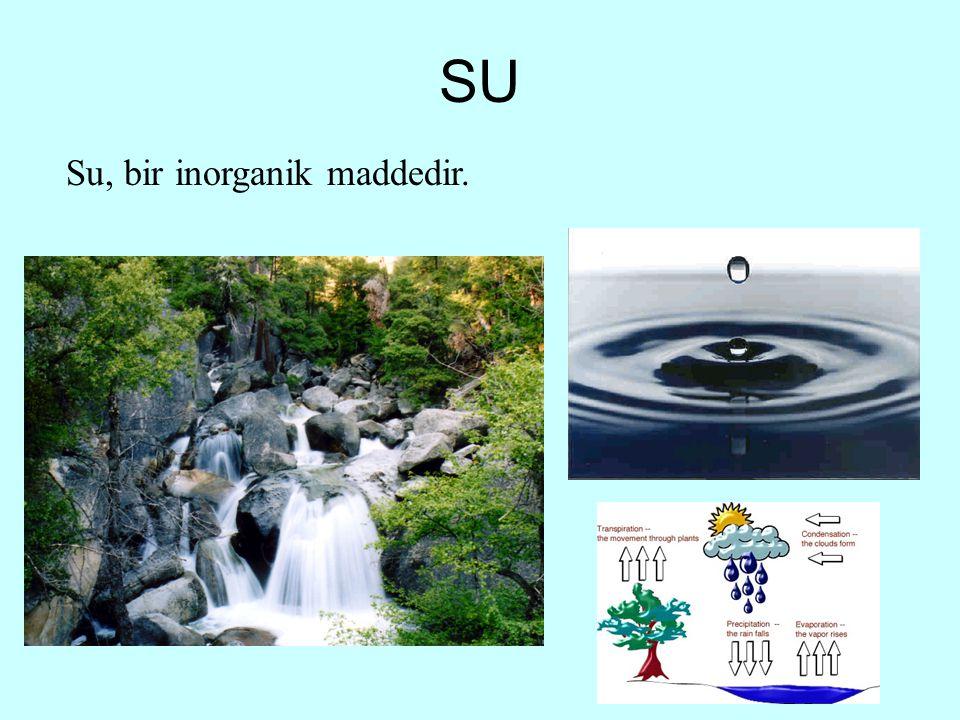 SU Su, bir inorganik maddedir.