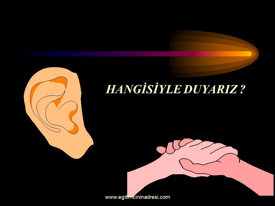 HANGİSİYLE DUYARIZ www.egitimcininadresi.com
