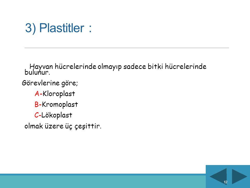 3) Plastitler : Görevlerine göre; A-Kloroplast B-Kromoplast
