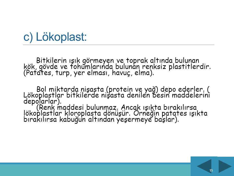 c) Lökoplast: