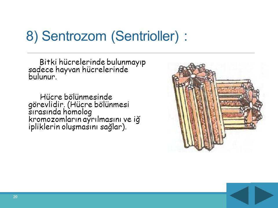 8) Sentrozom (Sentrioller) :
