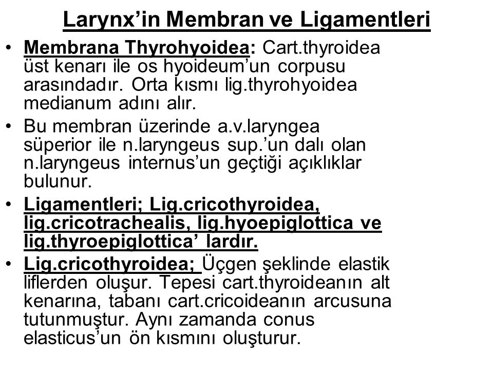 Larynx'in Membran ve Ligamentleri