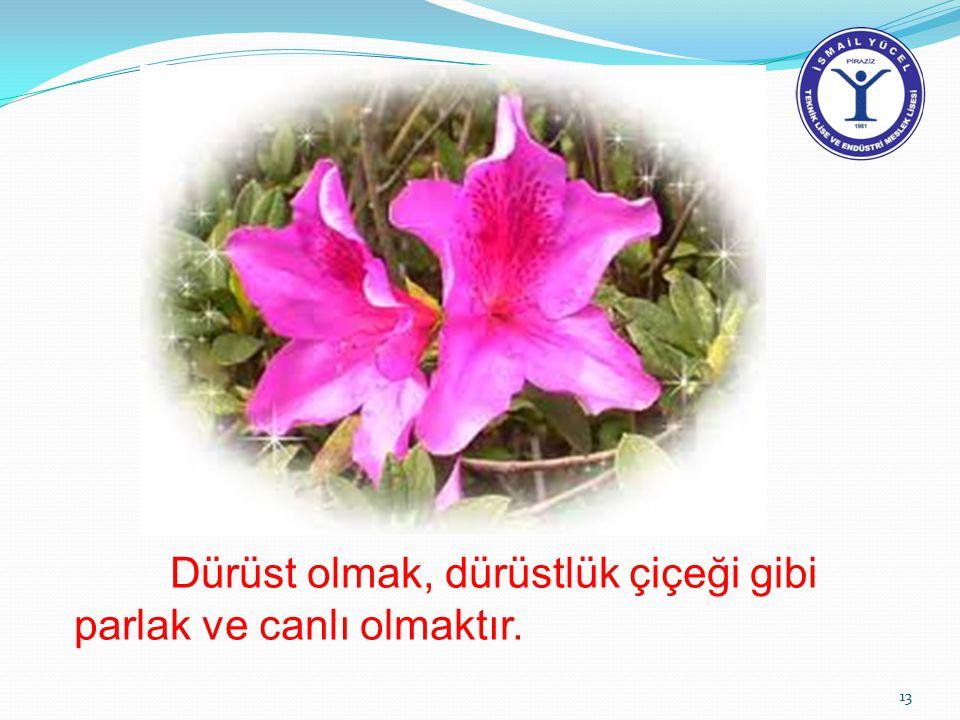 Dürüst olmak, dürüstlük çiçeği gibi parlak ve canlı olmaktır.