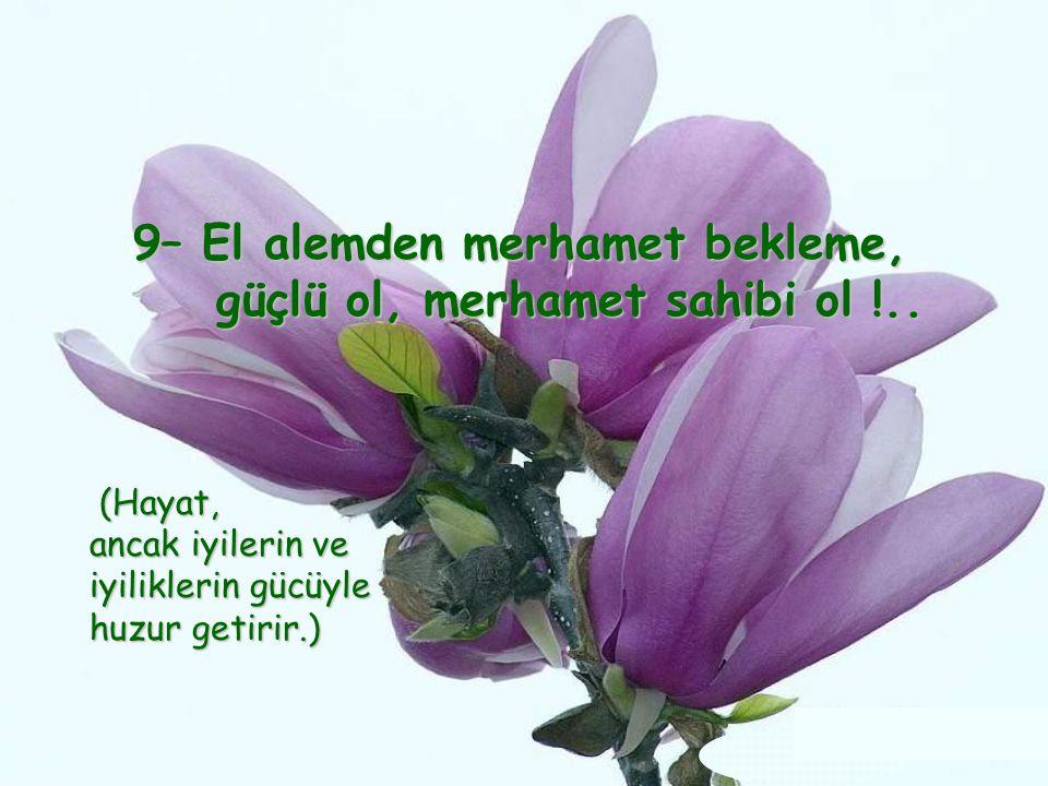 9– El alemden merhamet bekleme, güçlü ol, merhamet sahibi ol !..
