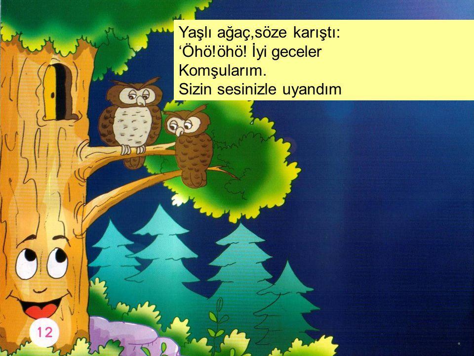 Yaşlı ağaç,söze karıştı: