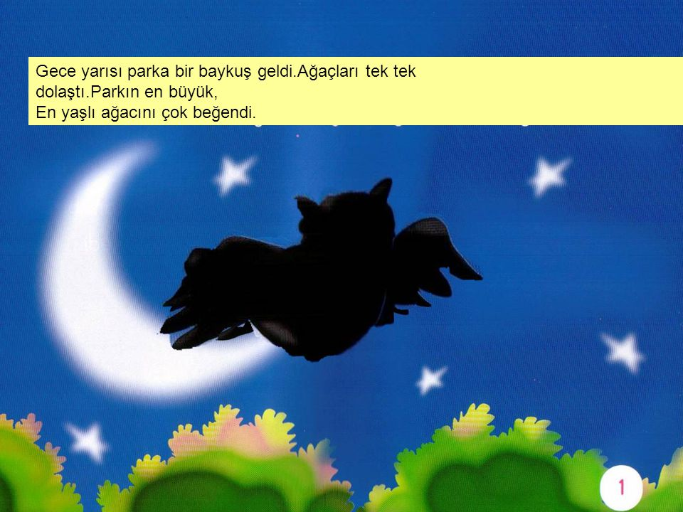 Gece yarısı parka bir baykuş geldi.Ağaçları tek tek