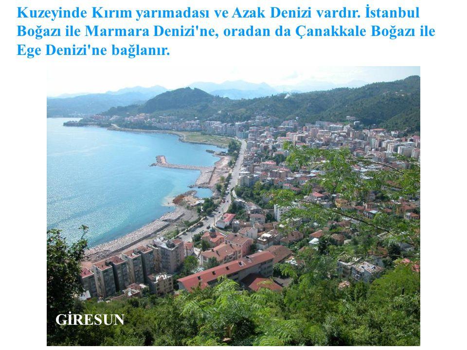 Kuzeyinde Kırım yarımadası ve Azak Denizi vardır