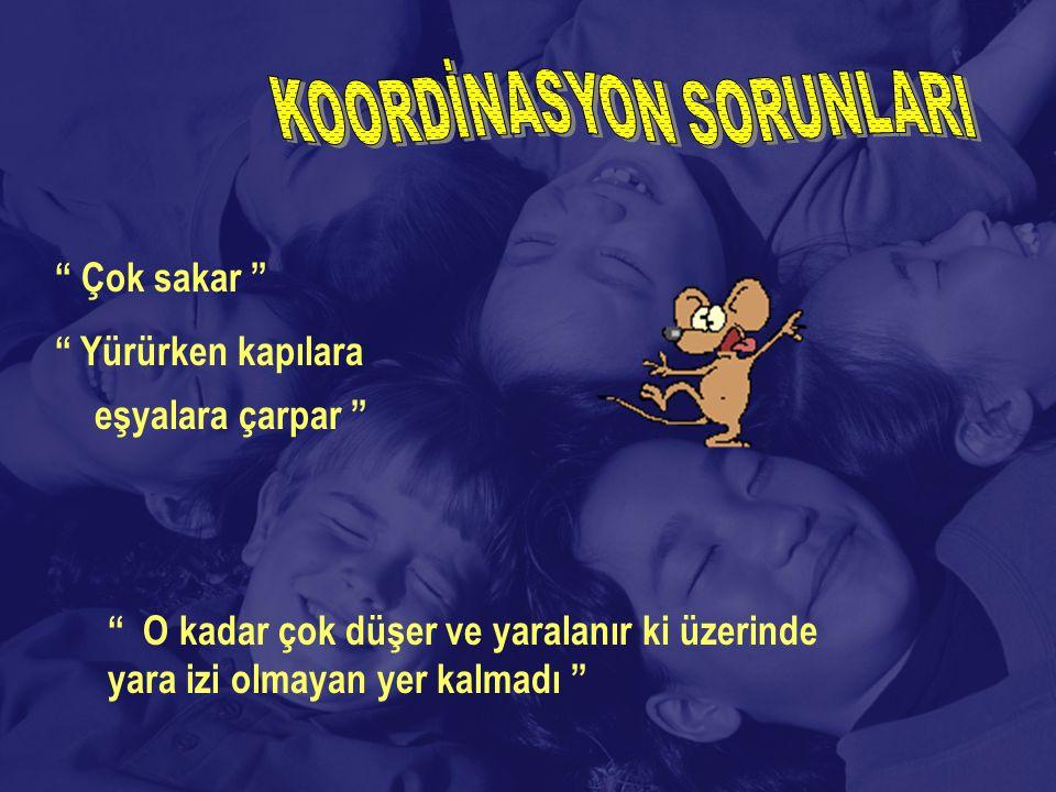 KOORDİNASYON SORUNLARI