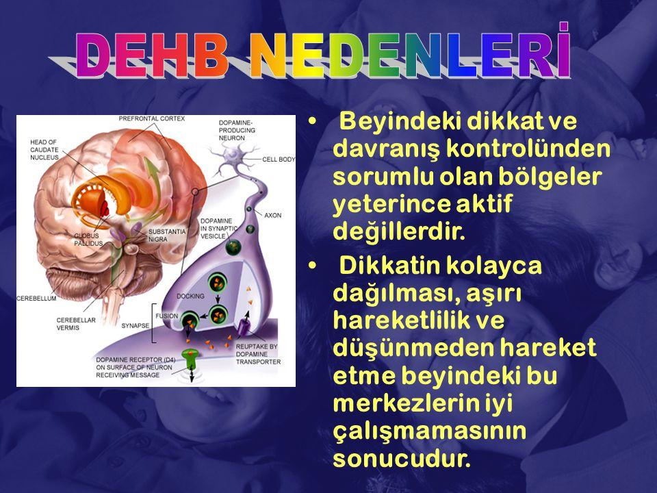 DEHB NEDENLERİ Beyindeki dikkat ve davranış kontrolünden sorumlu olan bölgeler yeterince aktif değillerdir.