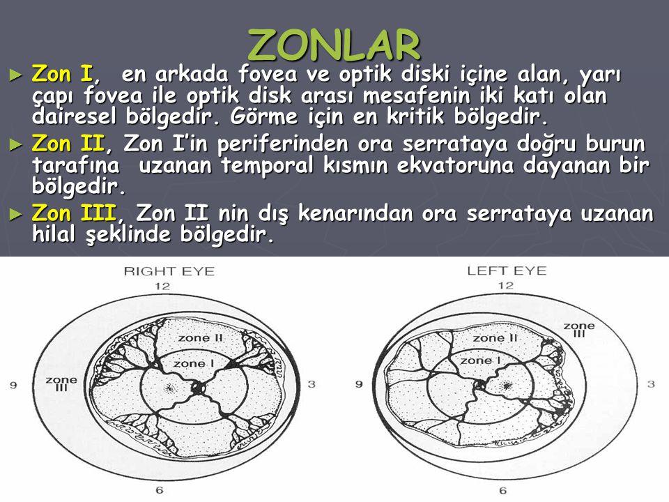 ZONLAR