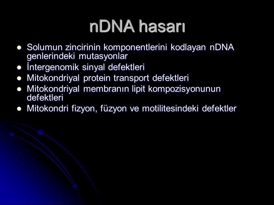 nDNA hasarı Solumun zincirinin komponentlerini kodlayan nDNA genlerindeki mutasyonlar. İntergenomik sinyal defektleri.