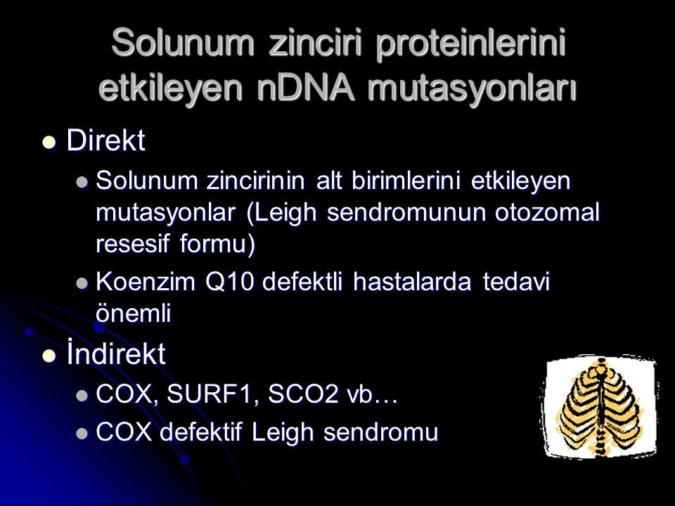 Solunum zinciri proteinlerini etkileyen nDNA mutasyonları