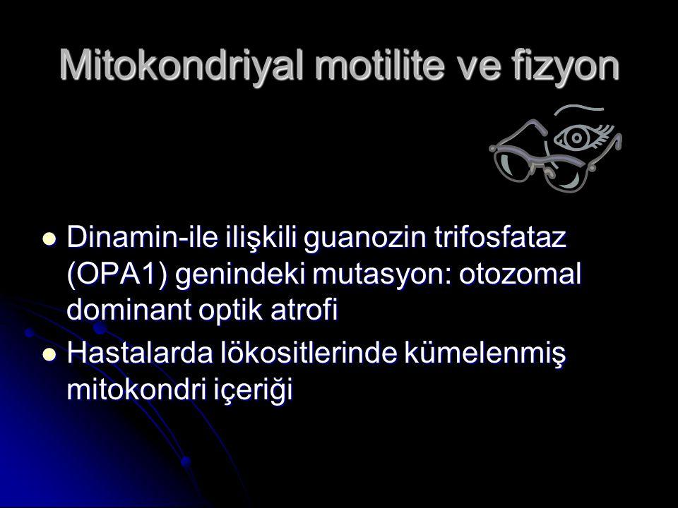 Mitokondriyal motilite ve fizyon