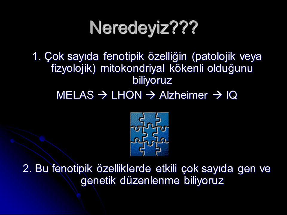 MELAS  LHON  Alzheimer  IQ