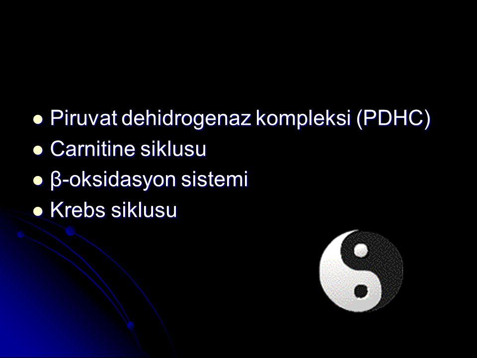 Piruvat dehidrogenaz kompleksi (PDHC)