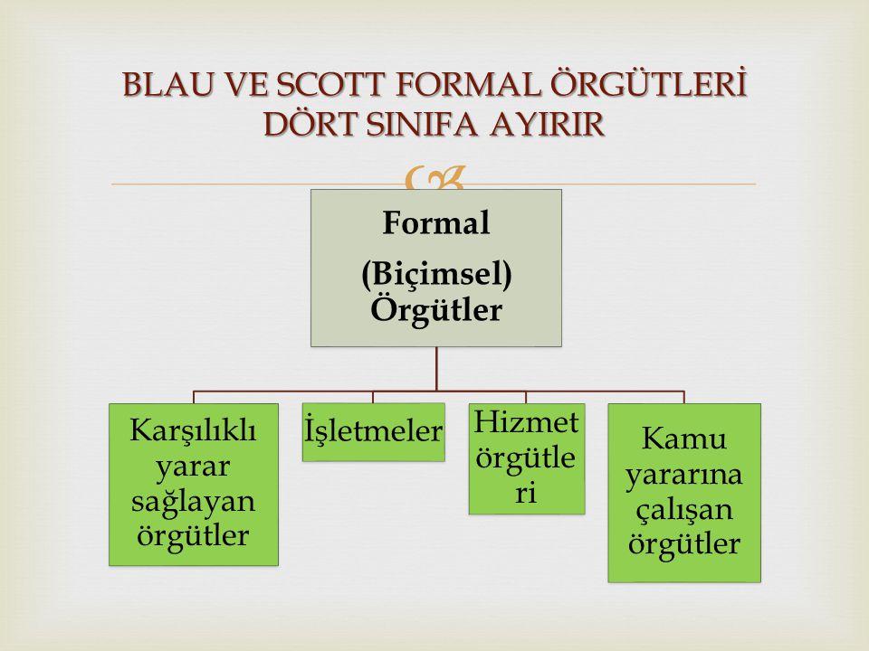 BLAU VE SCOTT FORMAL ÖRGÜTLERİ DÖRT SINIFA AYIRIR
