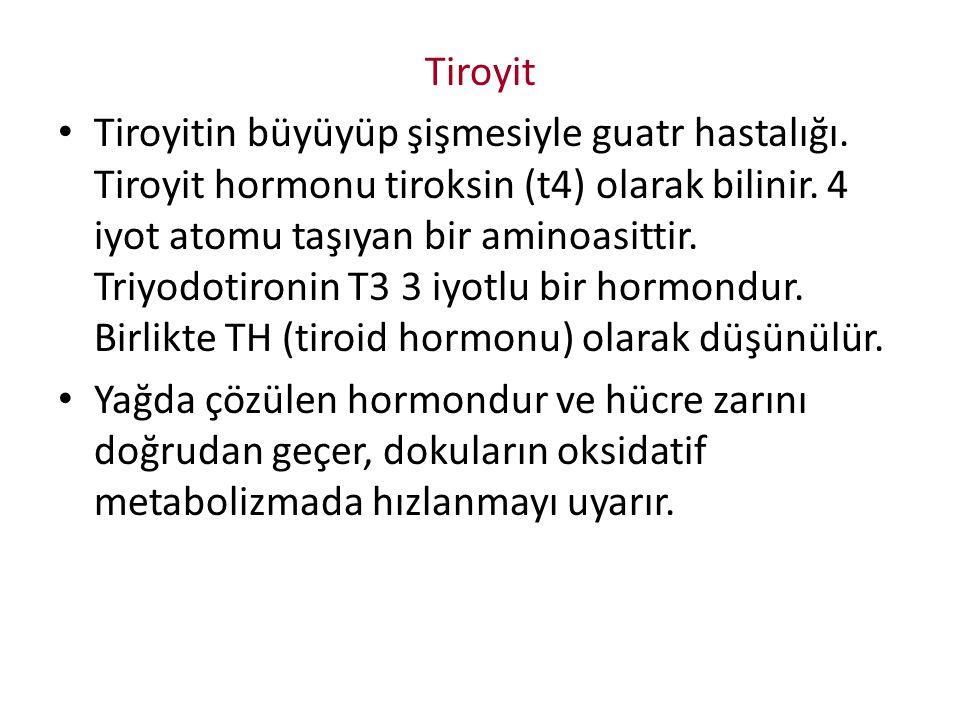 Tiroyit