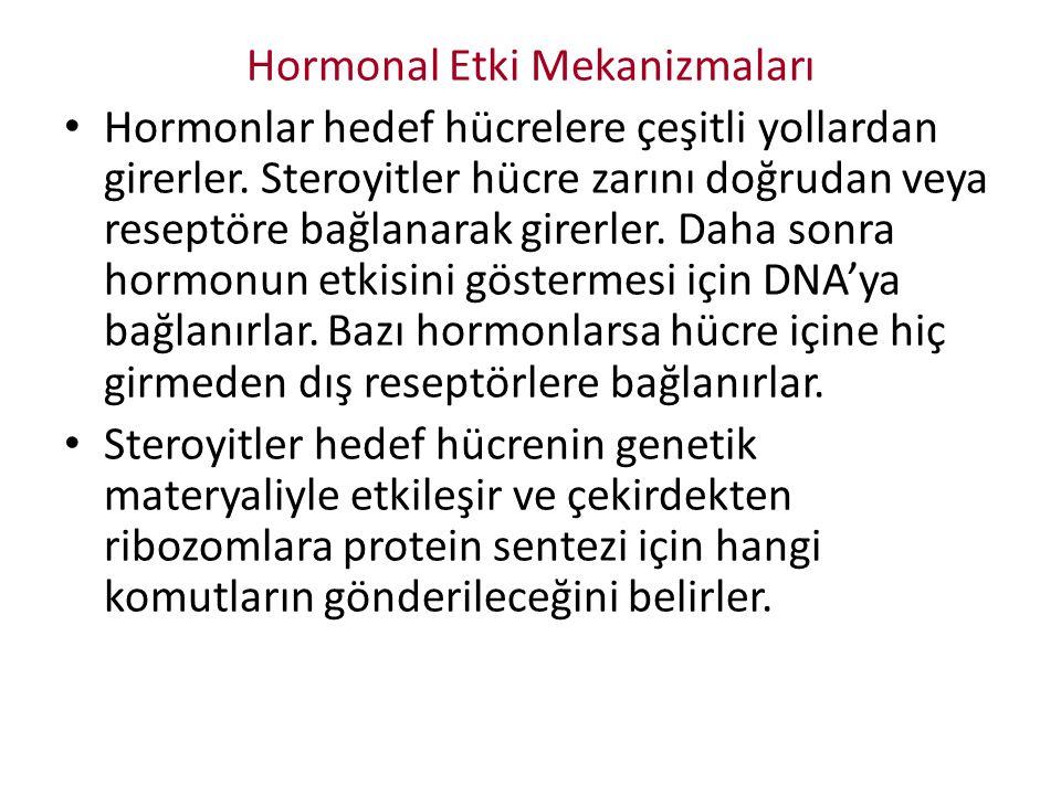 Hormonal Etki Mekanizmaları