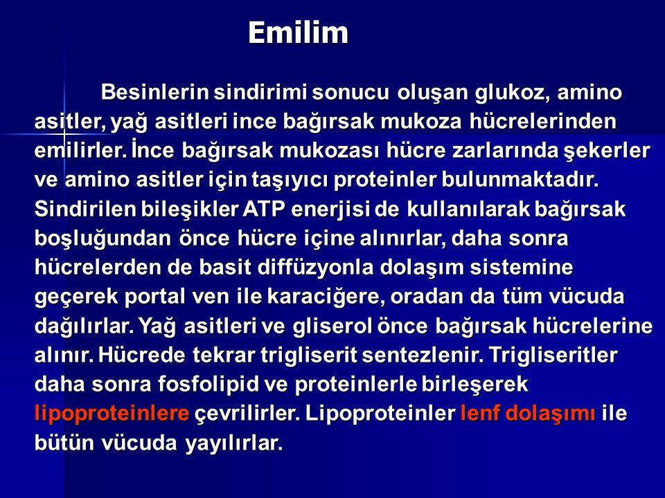 Emilim