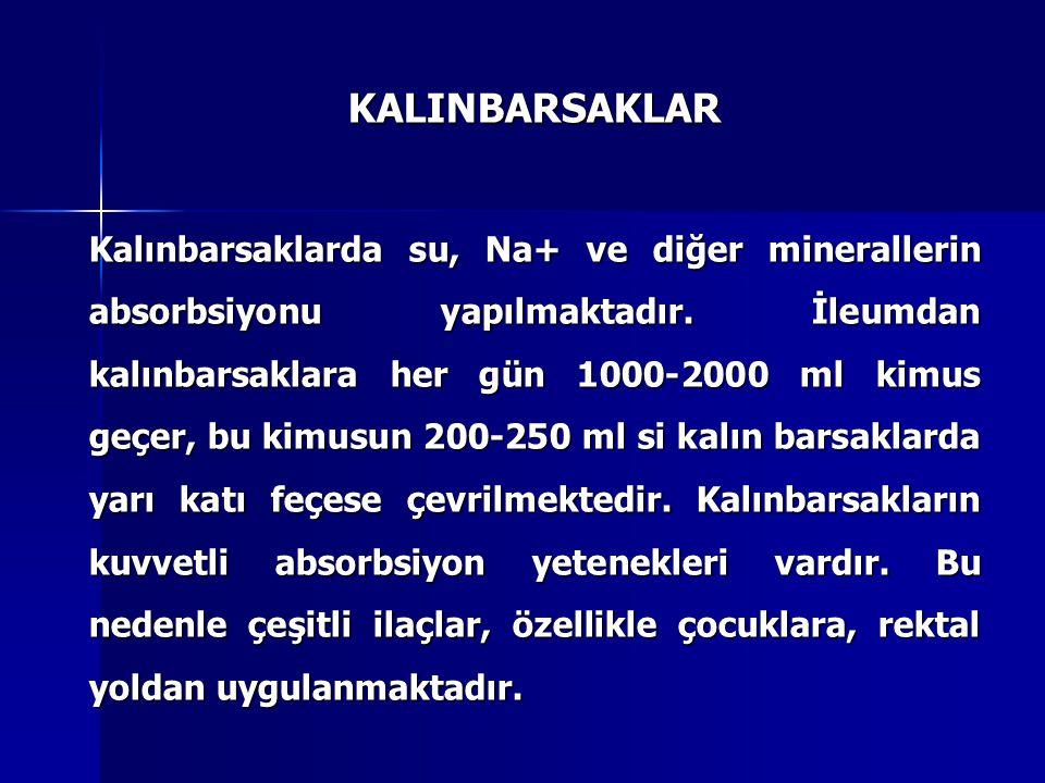 KALINBARSAKLAR