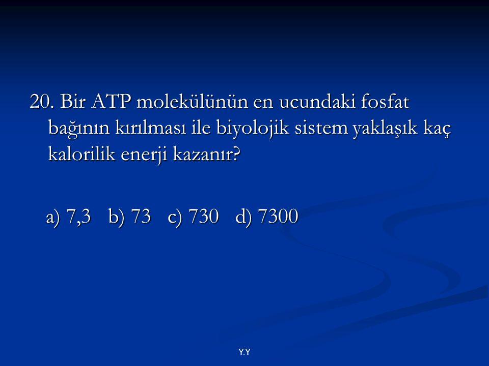 20. Bir ATP molekülünün en ucundaki fosfat bağının kırılması ile biyolojik sistem yaklaşık kaç kalorilik enerji kazanır