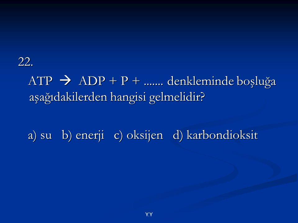 a) su b) enerji c) oksijen d) karbondioksit