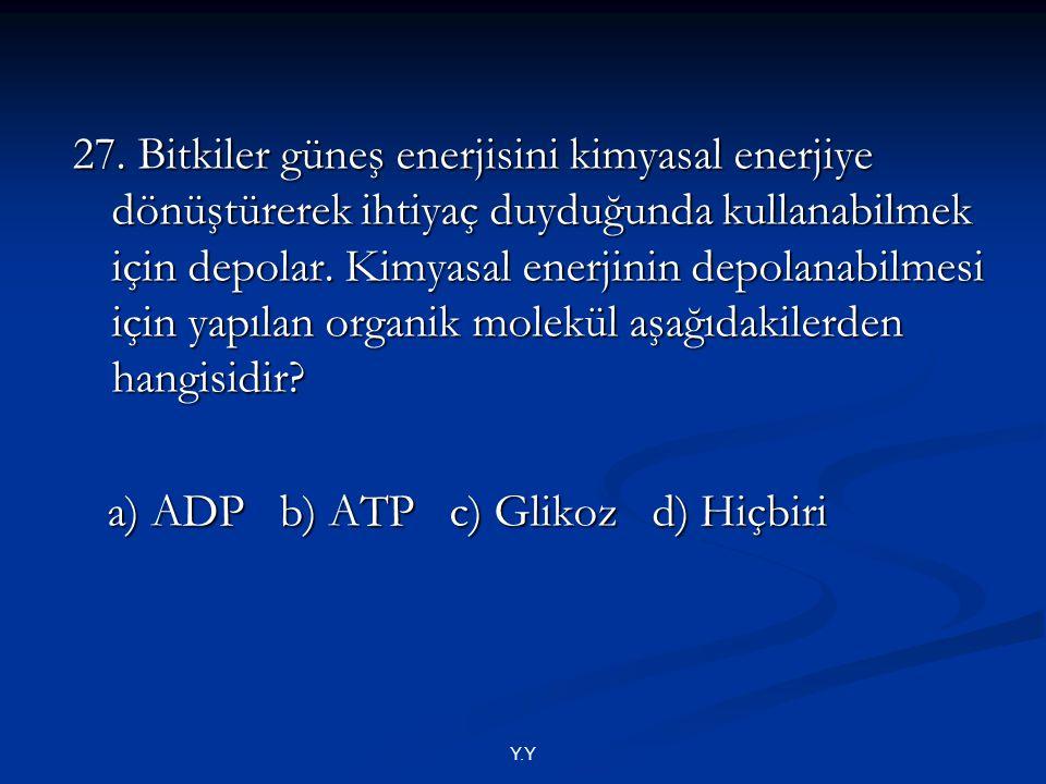 a) ADP b) ATP c) Glikoz d) Hiçbiri