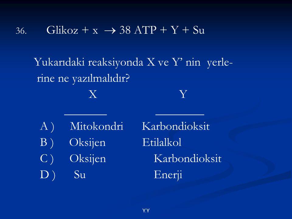 Yukarıdaki reaksiyonda X ve Y' nin yerle- rine ne yazılmalıdır X Y