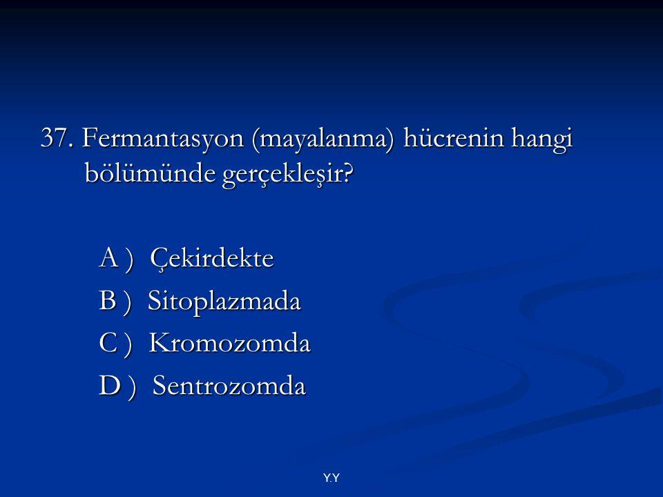 37. Fermantasyon (mayalanma) hücrenin hangi bölümünde gerçekleşir