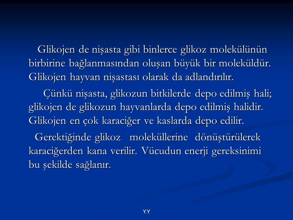 Glikojen de nişasta gibi binlerce glikoz molekülünün birbirine bağlanmasından oluşan büyük bir moleküldür. Glikojen hayvan nişastası olarak da adlandırılır.