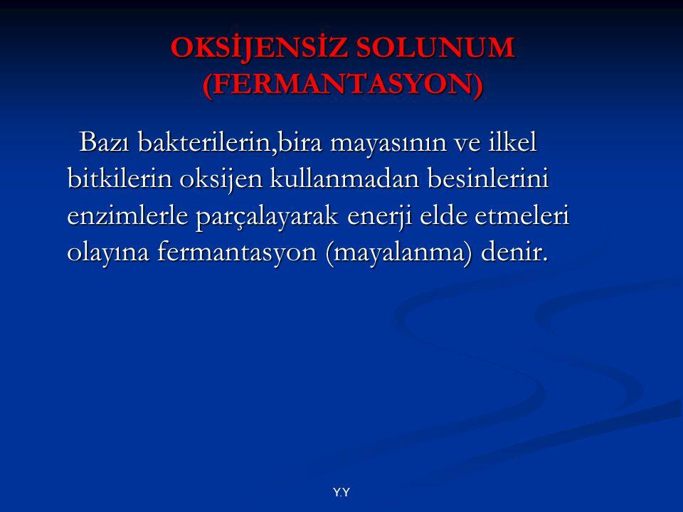 OKSİJENSİZ SOLUNUM (FERMANTASYON)