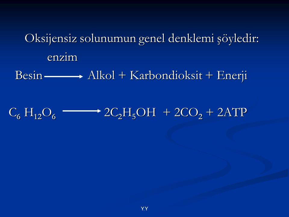 Oksijensiz solunumun genel denklemi şöyledir: enzim