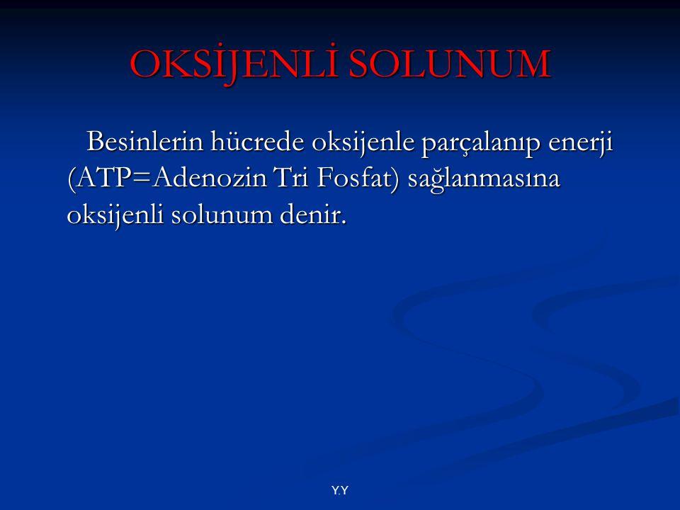 OKSİJENLİ SOLUNUM Besinlerin hücrede oksijenle parçalanıp enerji (ATP=Adenozin Tri Fosfat) sağlanmasına oksijenli solunum denir.